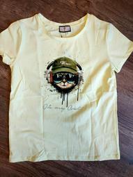 Разбитые серии футболки